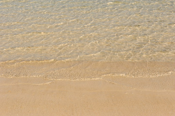 Wall Mural - clear sea water surface and sandy beach
