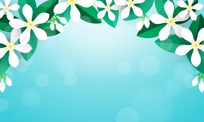 Wall Mural - Jasmine flower background vector illustration. Flower frame on blue bokeh background
