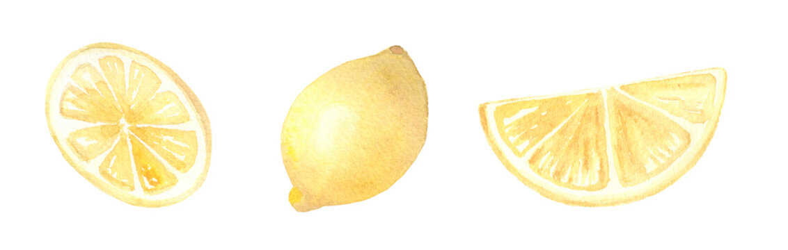 Watercolor clip art set of lemon slices hand painted isolated on white background.