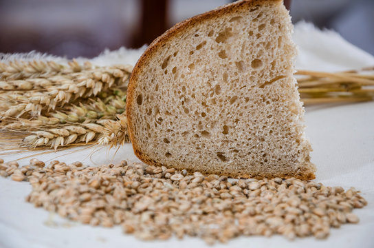 spikelets, wheat and a slice of bread on white