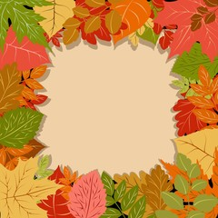 Autumn Leaves Fall Season Vector Frame Border Background
