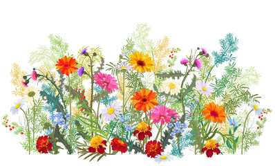 Fototapeta Horizontal autumn's border: marigold, thistles, gerbera, daisy flowers, small green twigs, red berries on white background. Digital draw, illustration in watercolor style, panoramic view, vector obraz