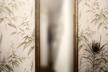 Long vintage mirror on wall with wallpaper and peacock feather antique retro design