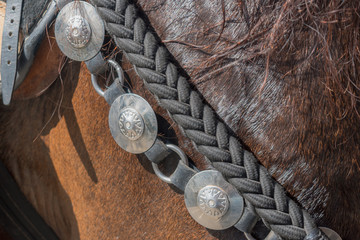 horse accessories made of metal