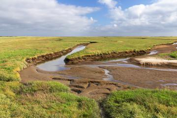 Salzwiese mit Priel bei Niedrigwasser in Nordfriesland an der Nordseeküste bei Sankt Peter-Ording. Nationalpark Schleswig-Holsteinisches Wattenmeer...