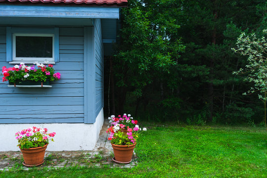 Small rustic wooden house blue board potted flowers garden outdoor recreation.