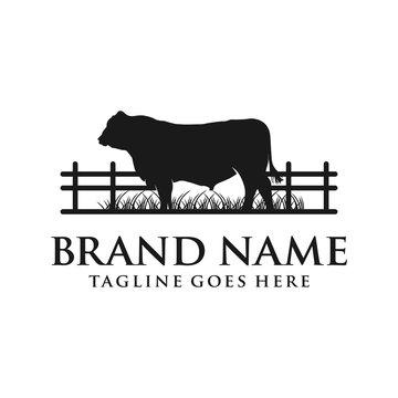 angus cow logo your company
