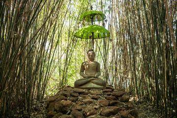 Buddha mit Schirm im Bambus - Religion - Buddhismus