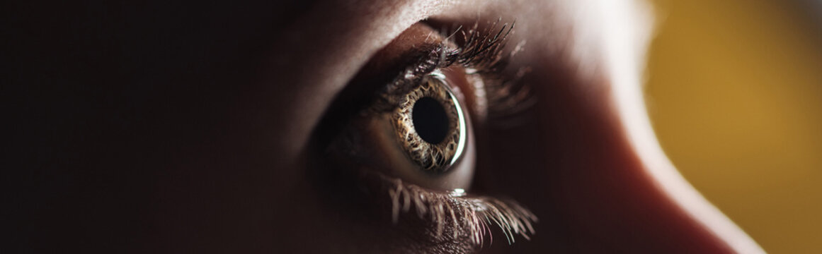 close up view of human eye looking away in darkness, panoramic shot