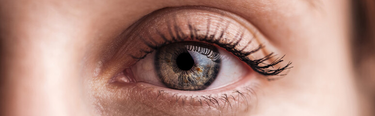 Fotobehang Macrofotografie close up view of human grey eye looking at camera, panoramic shot