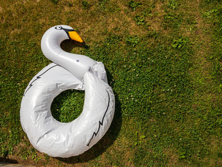 partially deflated swan floating toy, shot from above