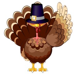Foto op Plexiglas Draw Thanksgiving Turkey Funny Cartoon Character Vector Illustration