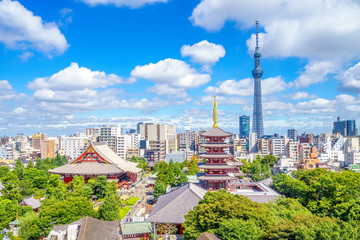 Aerial view of tokyo city with senso temple