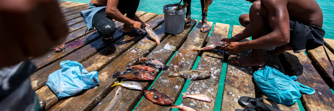 Fishermen with colorful fish