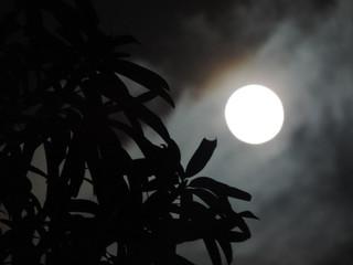 Foto tomada de la luna