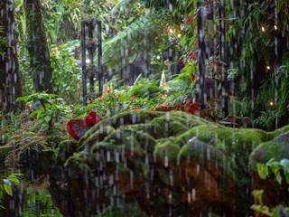 Foto op Plexiglas Singapore Indoor tropical rainforets canopy