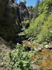 Randonnée le long de la rivière du bonheur, aigoual, occitanie, france