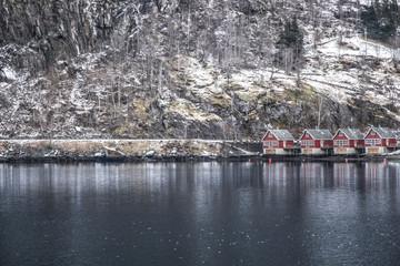 Maison norvégienne dans les fjords