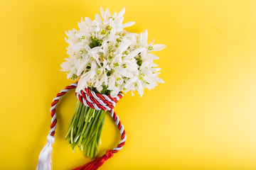 "Spring time flowers like snowdrops, hyacinth and roses, isolated on yellow simple background, spring symbol and traditional romanian ""Martisor"", ""1 martie"" festive on 1st of march"