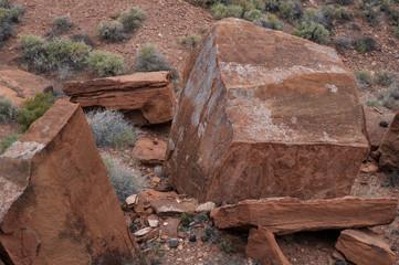 dsc_0098 Desert - Southwest USA