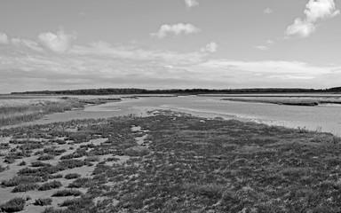 Laesoe / Denmark: View from the salt marsh island of Kringelroen over a shallow tidal creek to the salt marsh island of Hornfiskroen in the south of the Kattegat island at ebb tide