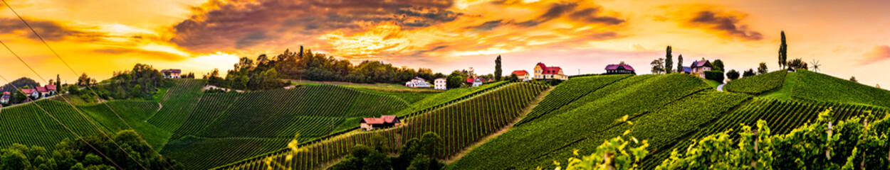 Panorama of vineyards hills in south Styria, Austria