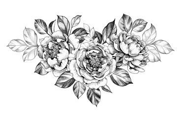 Hand drawn Peony Flower with Leaves