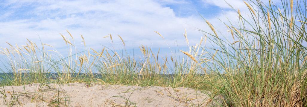 Dünen Panorama Ostsee