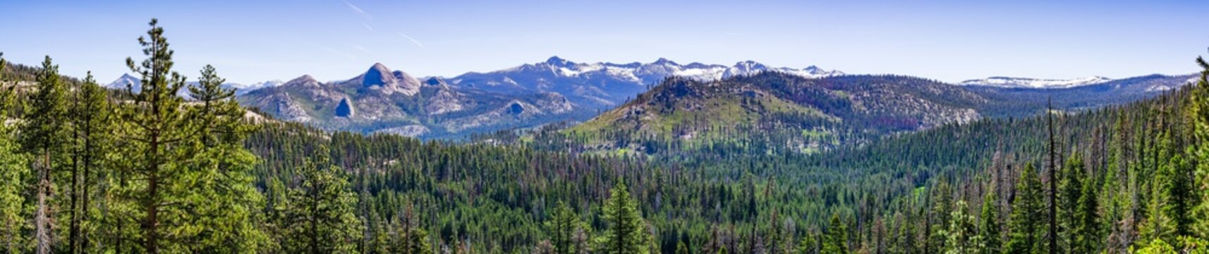 Panoramic view of wilderness areas in Yosemite National Park with evergreen forests covering valleys and snow capped mountains visible in the background; Sierra Nevada mountains, California