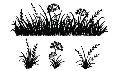 Fototapeta Template grass isolated on white background, vector illustration. Cutout thick herb plant. Horizontal banner of meadow silhouettes. Laser cut grassland. obraz