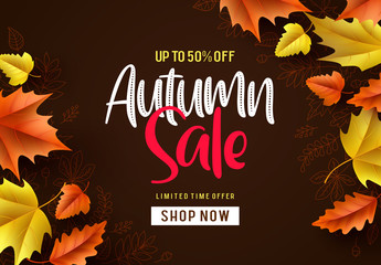 Autumn sale vector background. Fall season banner design with autumn sale and discount text and colorful maple and oak leaves in brown pattern background. Vector illustration.