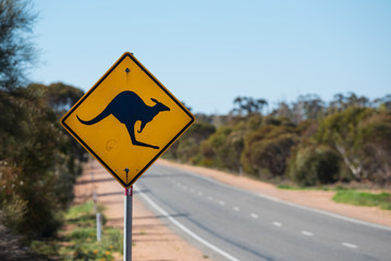 Australian road sign with picture of a kangaroo on rural country highway