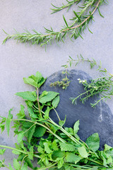 Fresh mint leaves and rosemary to season dishes