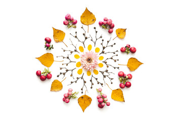 Autumn Mandala Made Of Dry Leaves, Berries, Twigs And Pink Flowerhead