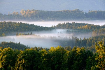 Morning fog over the forests at Aidlinger Hˆhe, near Murnau, Pfaffenwinkel, Upper Bavaria, Bavaria, Germany, Europe