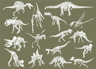 Color set of white dinosaur skeletons isolated on grey background,graphical illustration