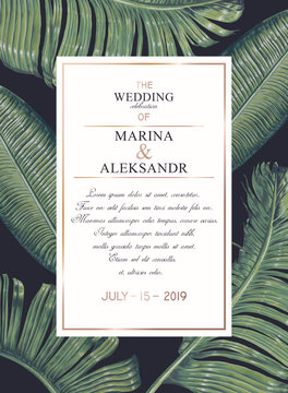 Tropical, trendy, greeting or invitation card, template design with green palm leaves. Banana leaves in realistic style with high details. Set of poster, flyer brochure, cover, party advertisement.