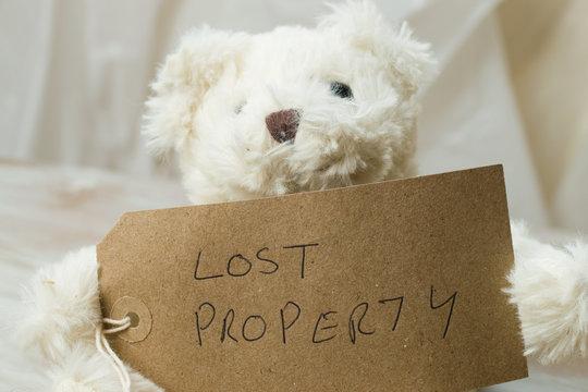 Lost property a cute children's teddy bear