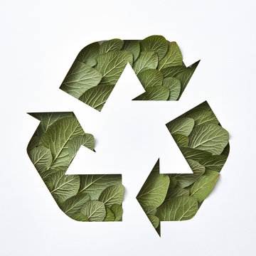 Sign recycle from green leaves and white cardboard with copy space. Eco environment garbage recycling concept. Flat lay