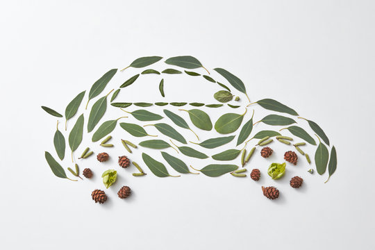 Pattern auto made from cones, green leaves and buds on a gray background with space for text. Eco concept. Flat lay