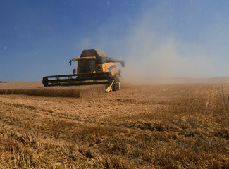 Farm implements: Modern combine harvester in a big dust cloud while mowing a wheat field on a bright summer day in July