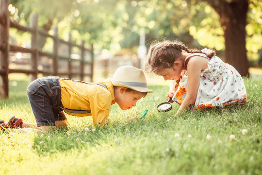 Cute adorable Caucasian girl and boy looking at plants grass in park through magnifying glass. Children friends siblings with loupe studying learning nature outside. Child education concept.