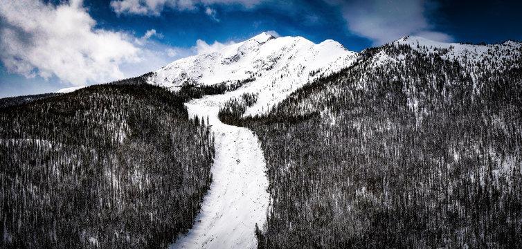 Silent Bob Frisco Avalanche