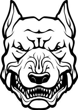 Pitbull Head, Growling Tough Dog