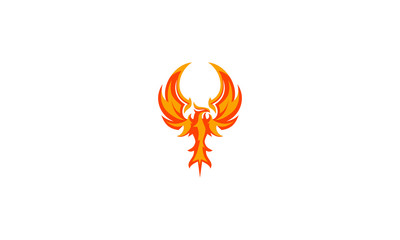phoenix bird logo vector icon