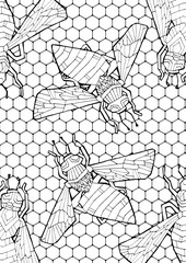 Insects. Hand drawing coloring for kids and adults. Beautiful drawings with patterns and fine details. One of a series of colored pictures.