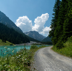 Wall Mural - summer mountain landscape with turquoise lake and gravel road bordered by wildflowers