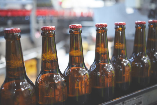 Beer bottles on the conveyor belt. Shallow dof. Selective focus.