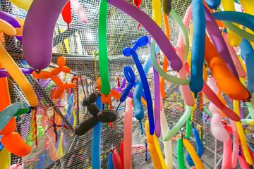 Foto op Plexiglas Paradijsvogel カラフルな長細い風船のイメージ