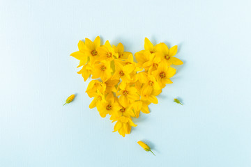 Heart shaped with yellow flower heads on a light blue background